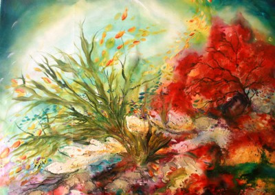 Caroline Degroiselle, Flamboyant, mon jardin sous la mer 3346-40F-AC