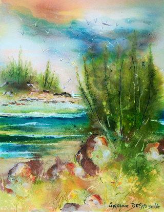 Caroline degroiselle, Petite baie des pins d'Eole 35256AQ638X46