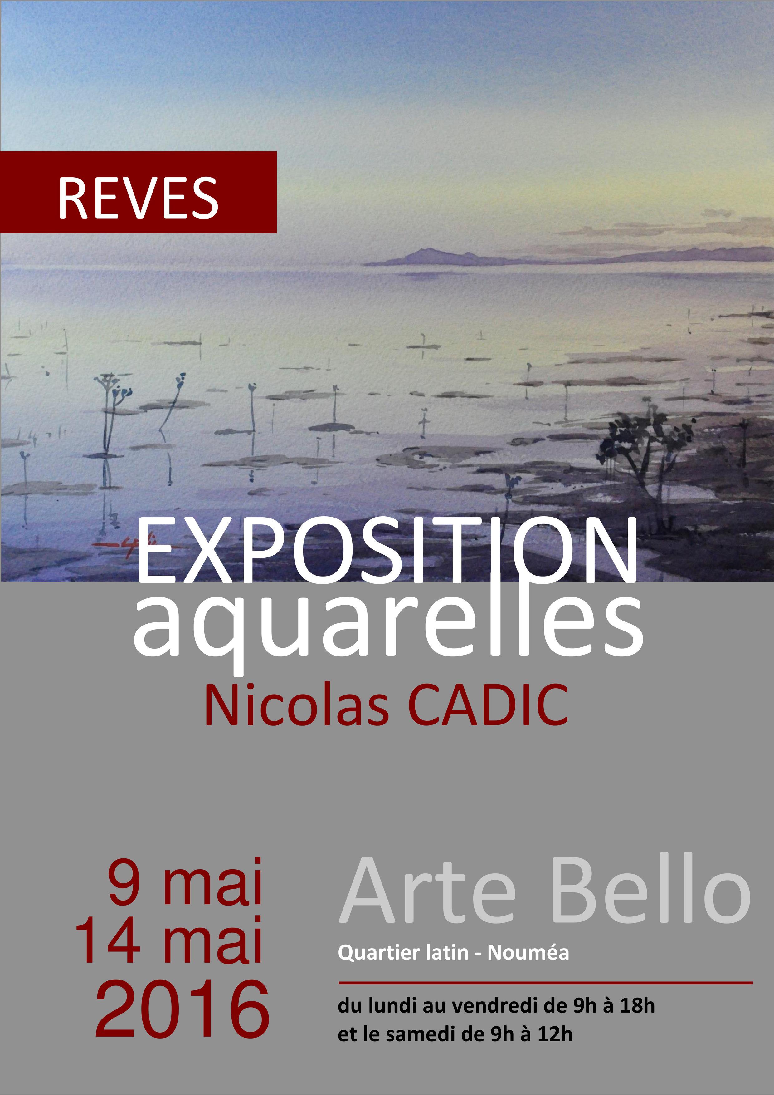 Nicolas Cadic, affiche