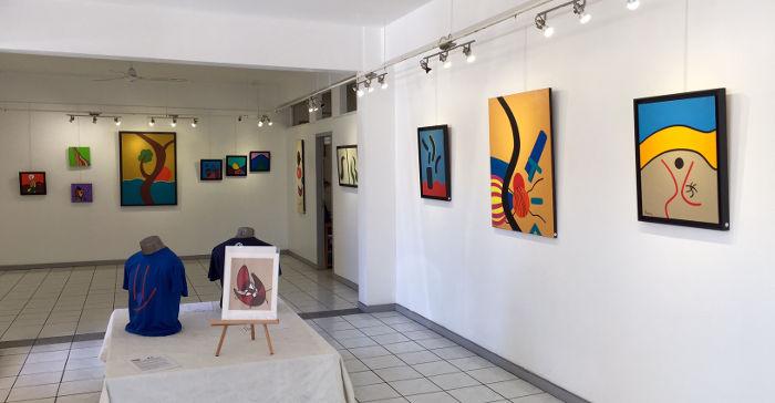 Pierre Nanty, installation 1