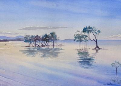 Nicolas Cadic, Mangrove, Aq