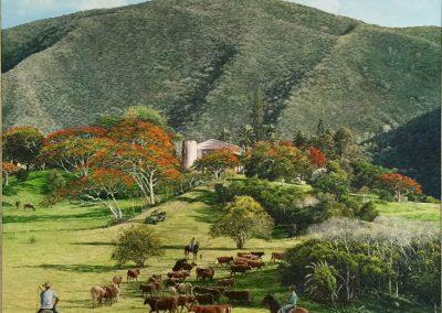 Wahono, Chateau Mueo