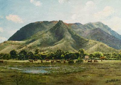 Wahono, Pic